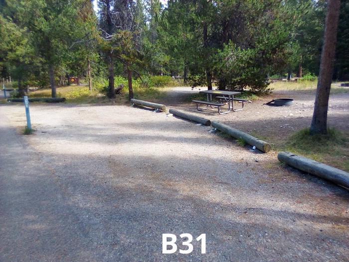 B Loop Site 31