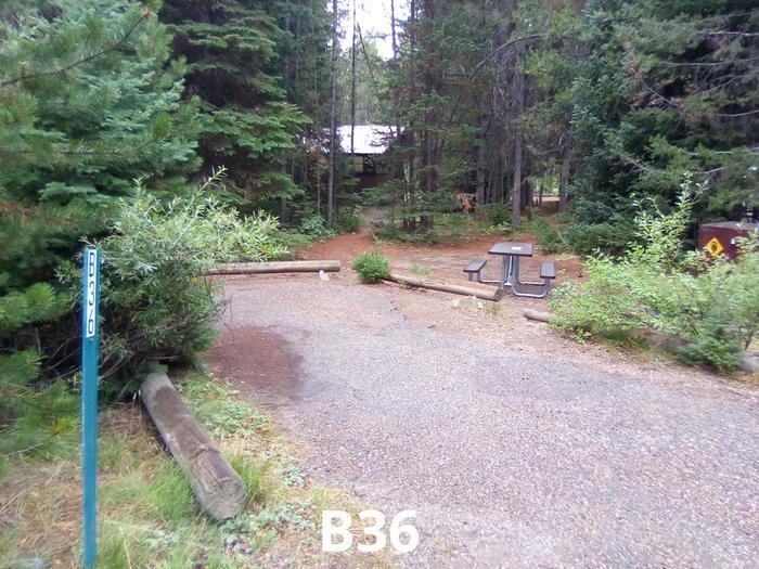 B Loop Site 36