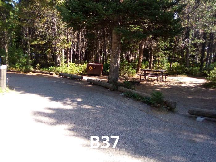 B Loop Site 37