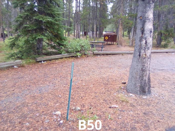 B Loop Site 50