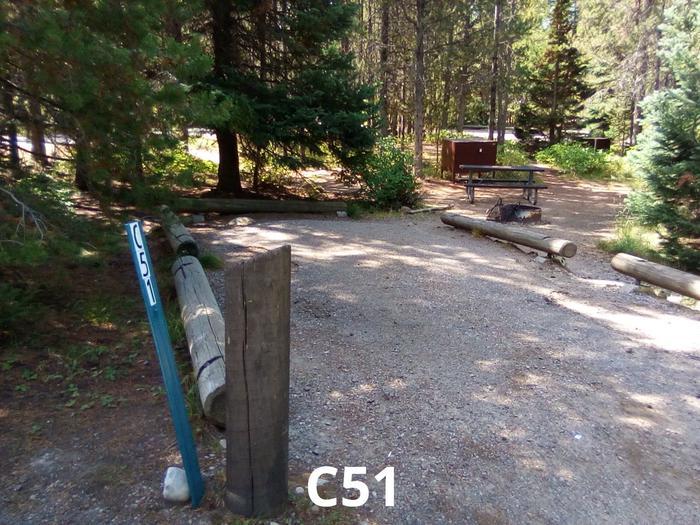 C Loop Site 51