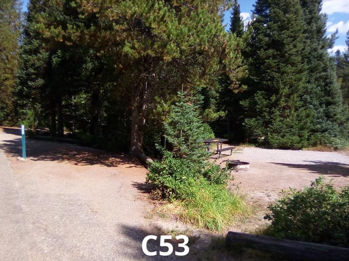 C Loop Site 53