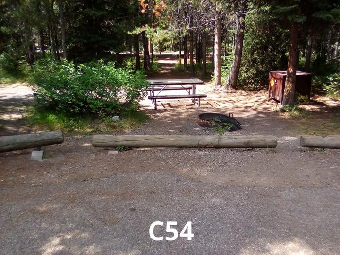 C Loop Site 54