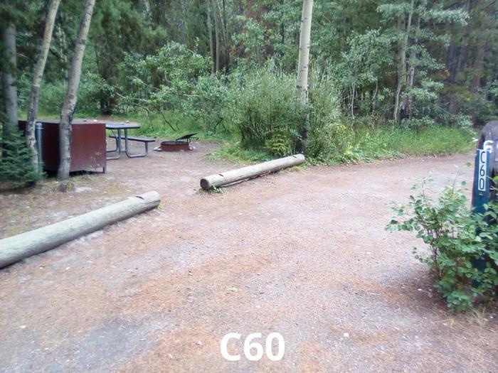 C Loop Site 60