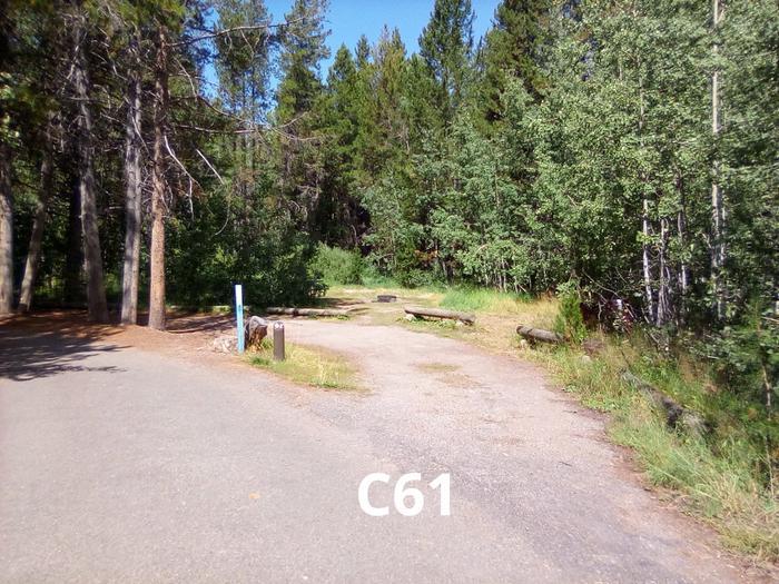 C Loop Site 61