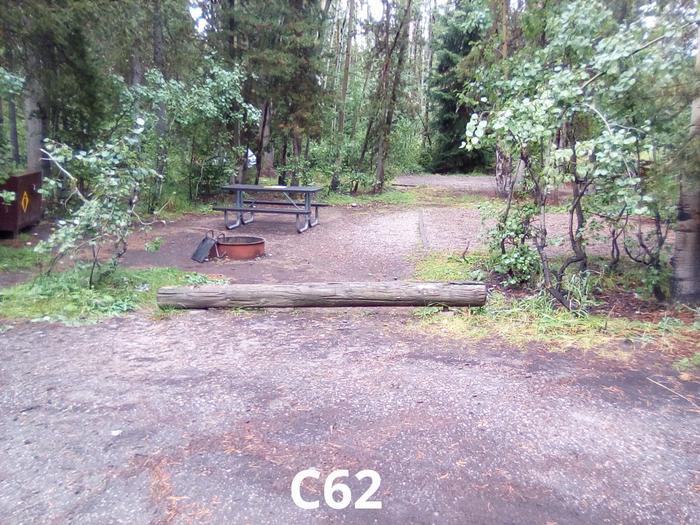 C Loop Site 62