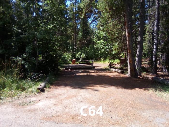 C Loop Site 64