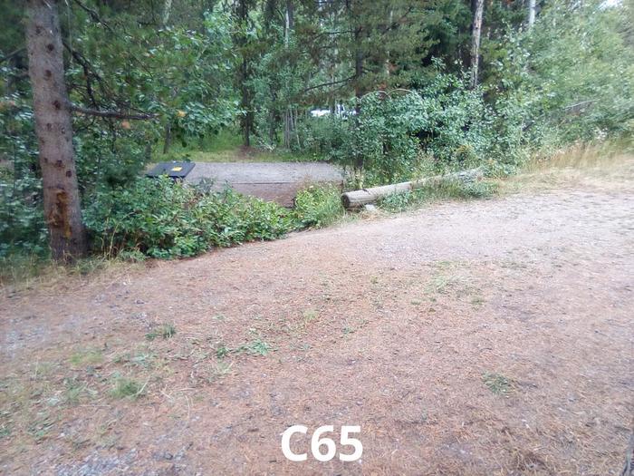 C Loop Site 65