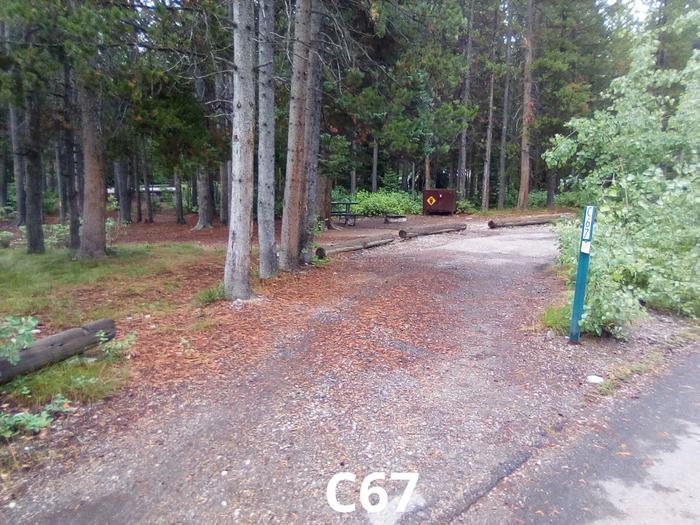 C Loop Site 67