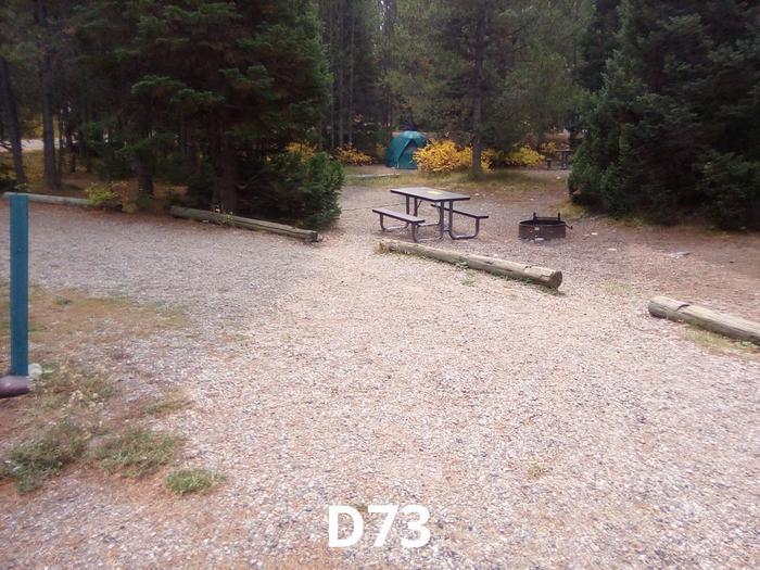 D Loop Site 73