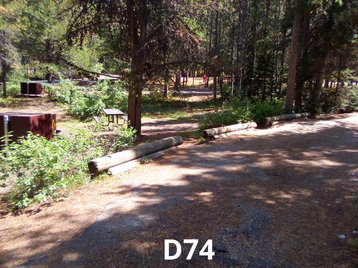 D Loop Site 74