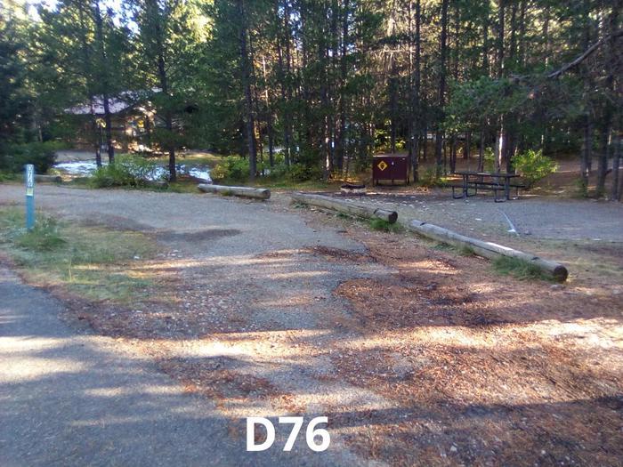 D Loop Site 76