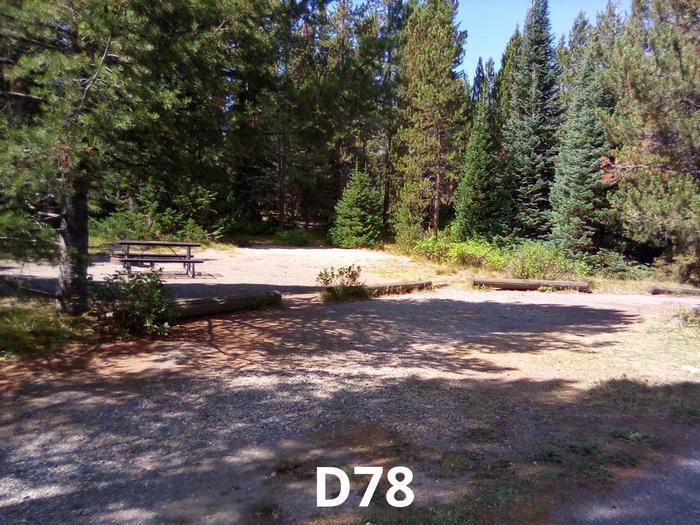 D Loop Site 78