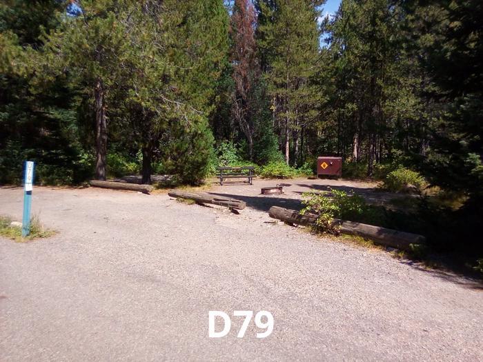 D Loop Site 79