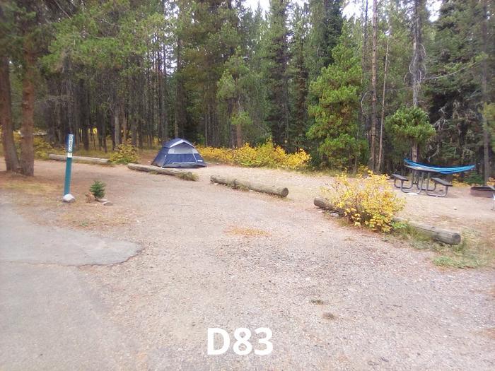 D Loop Site 83