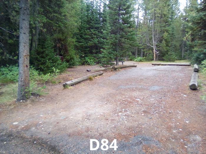 D Loop Site 84
