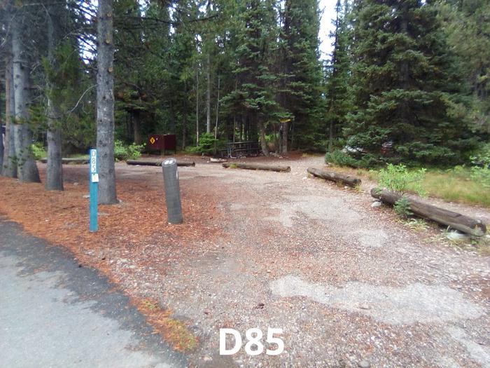 D Loop Site 85