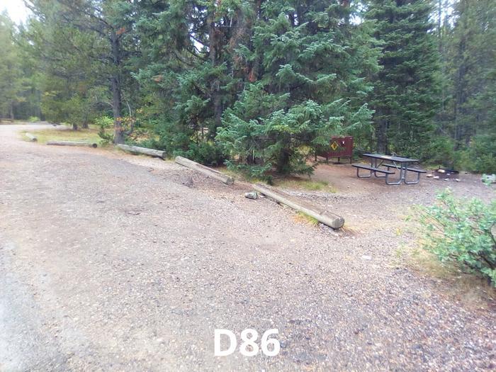 D Loop Site 86