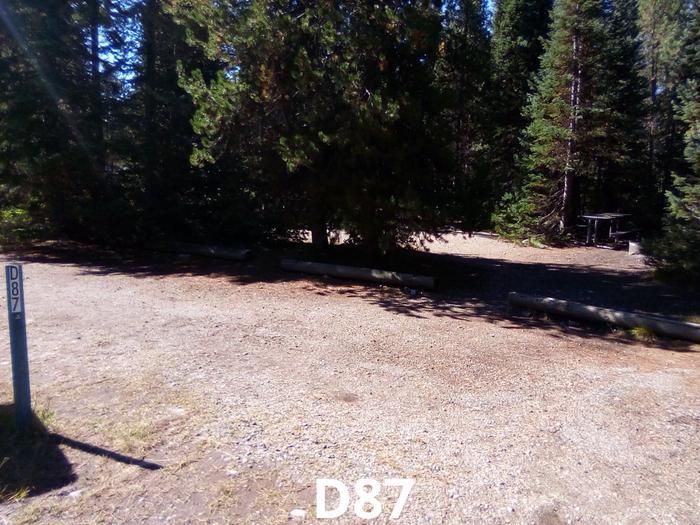D Loop Site 87