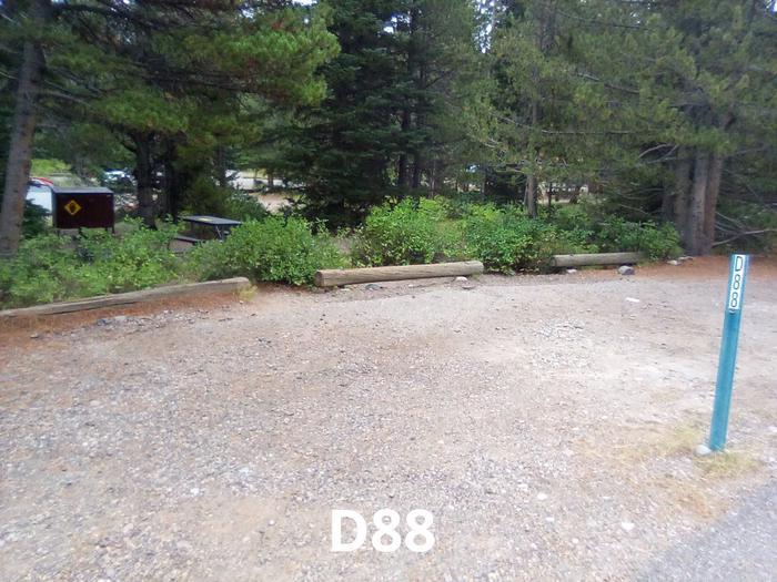 D Loop Site 88