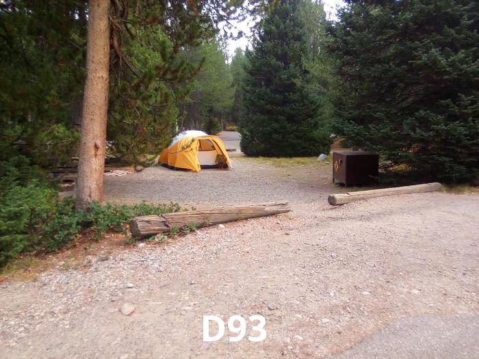 D Loop Site 93