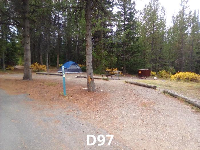 D Loop Site 97