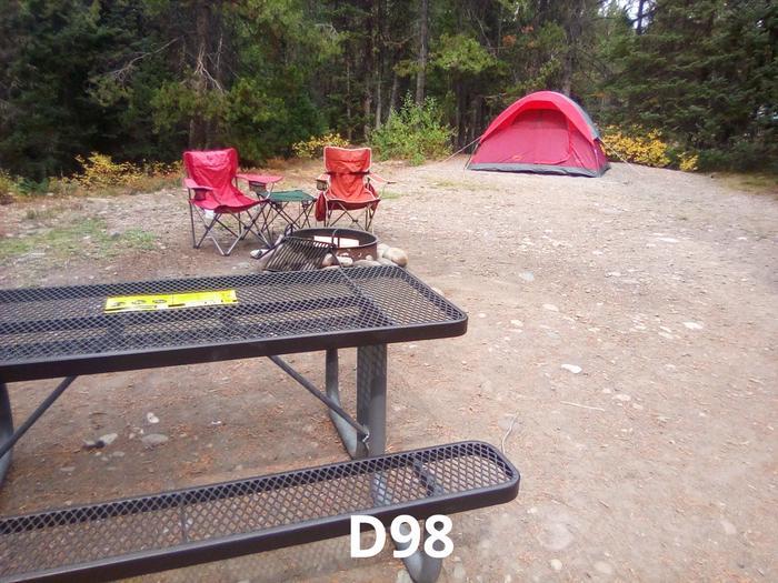 D Loop Site 98