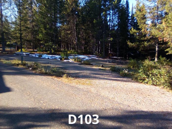 D Loop Site 103