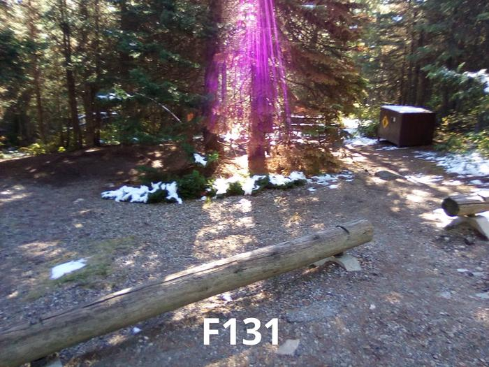 F Loop Site 131