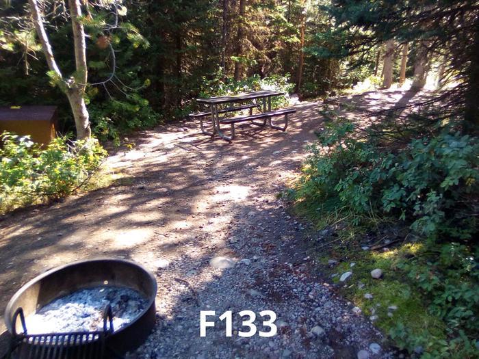 F Loop Site 133