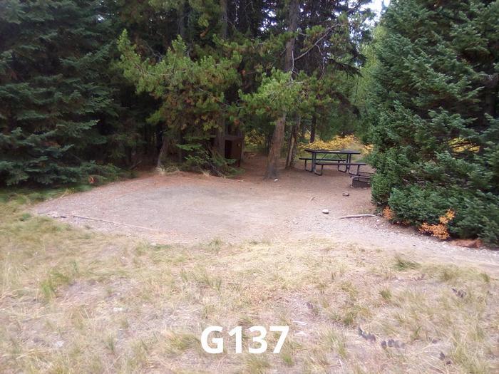 G Loop Site 137