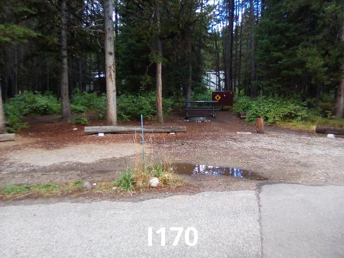 I Loop Site 170