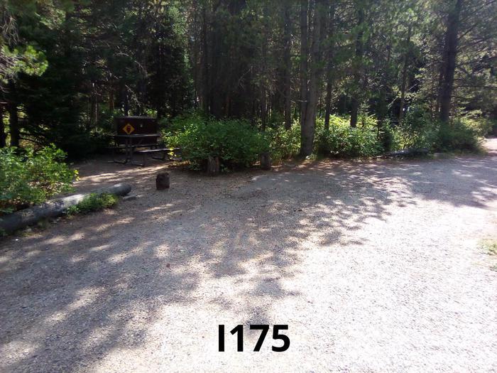 I Loop Site 175