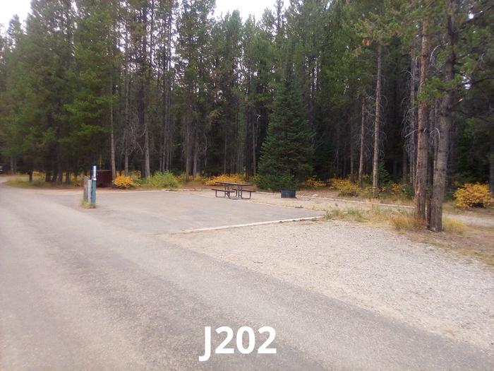 J Loop Site 202