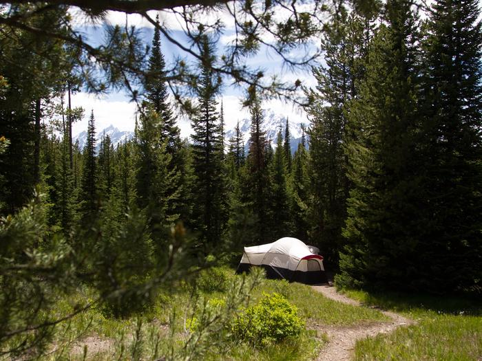 Preview photo of Colter Bay Campground