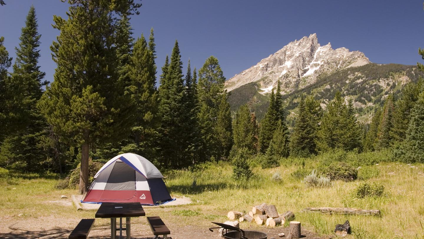 Jenny Lake Tent SiteJenny Lake Campground is a tent-only campground. Trailers, campers, and pop-up roof tents are not permitted.