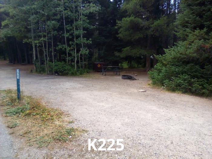 K Loop Site 225