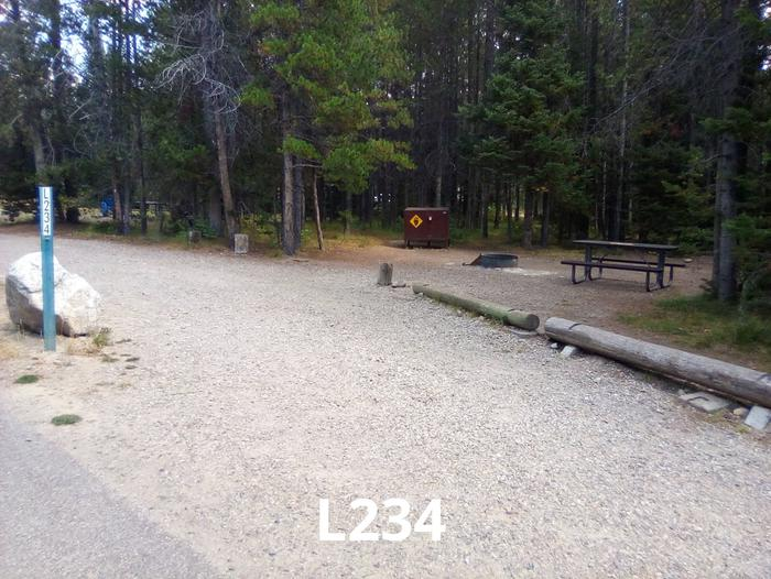 L Loop Site 234