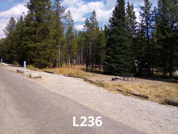 L Loop Site 236