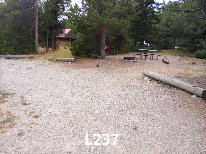 L Loop Site 237
