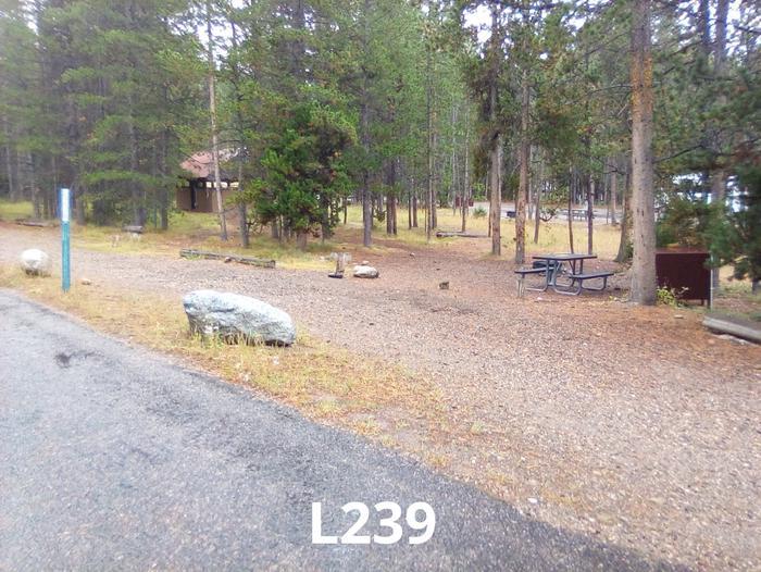 L Loop Site 239