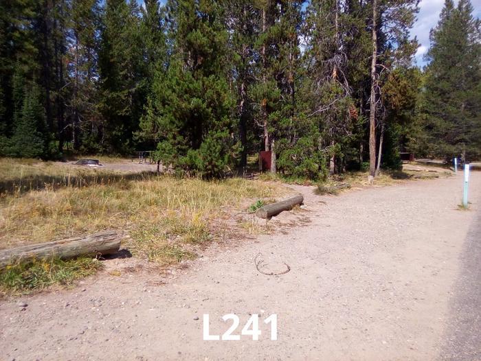 L Loop Site 241