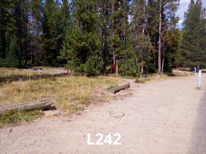 L Loop Site 242
