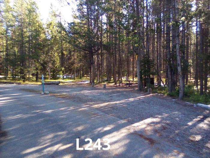 L Loop Site 243