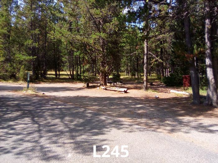 L Loop Site 245