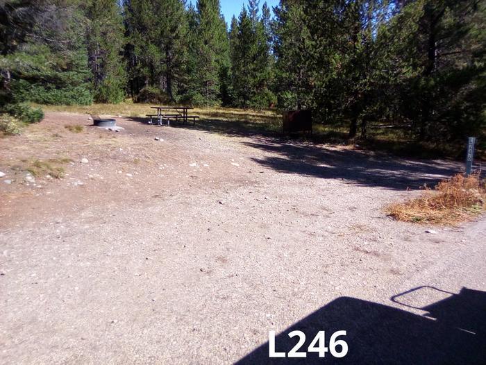 L Loop Site 246