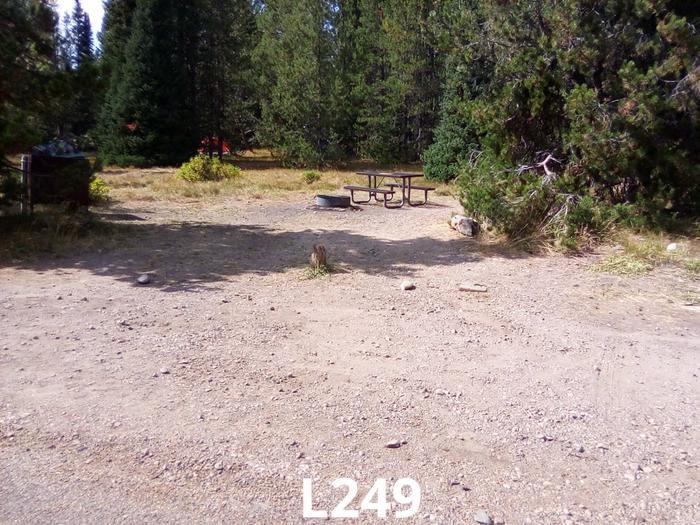 L Loop Site 249