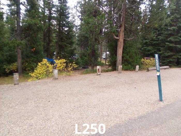 L Loop Site 250
