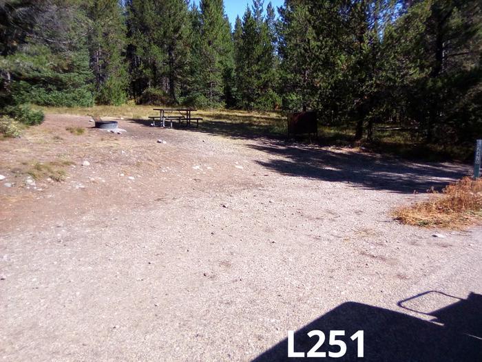 L Loop Site 251