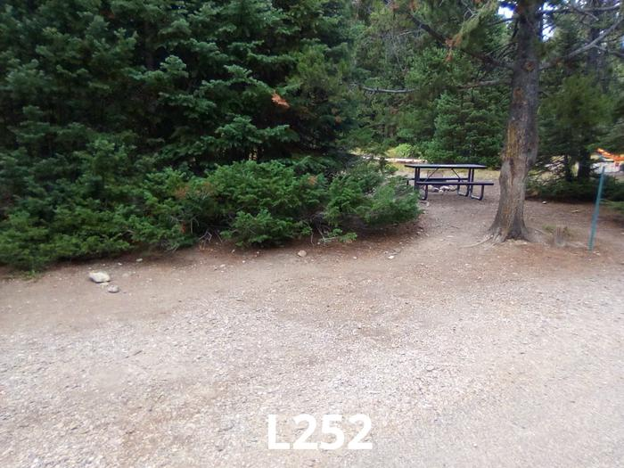 L Loop Site 252